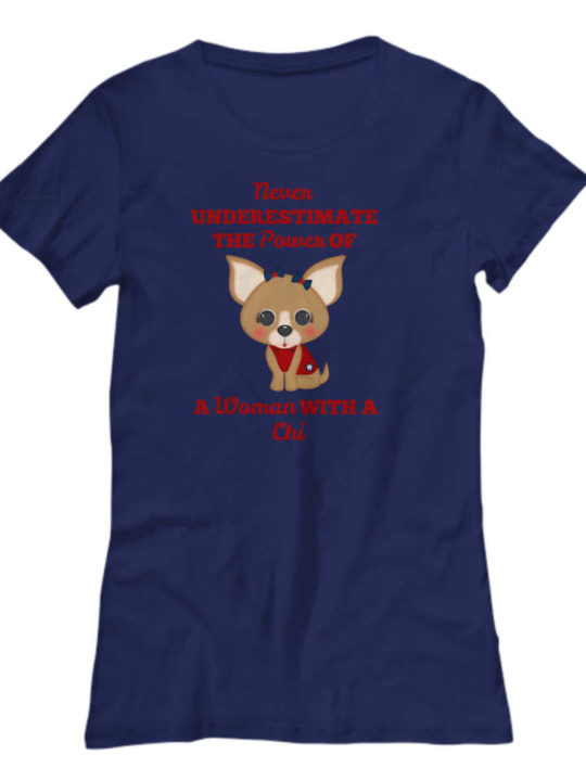 """This shirt says """"Never Underestimate the Power of a Woman with a Chi""""."""