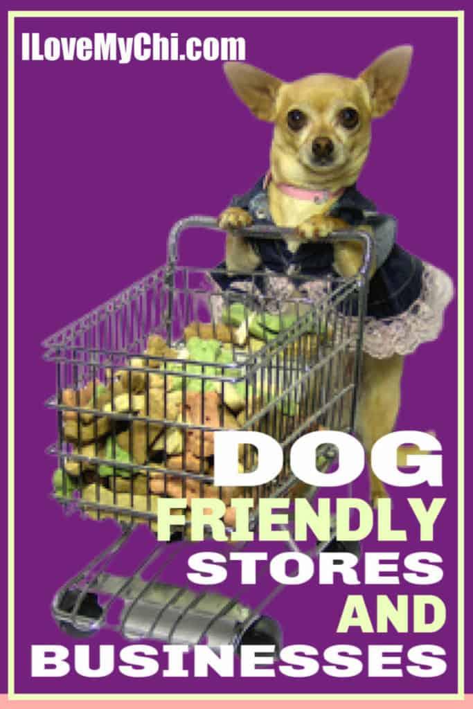 chihuahua pushing a shopping cart