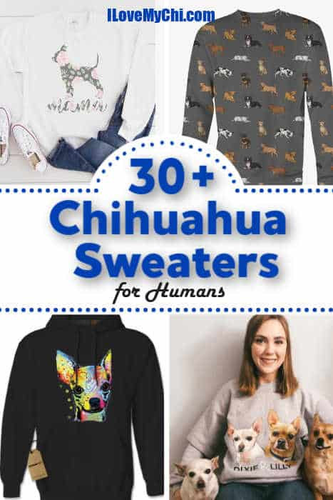various chihuahua sweaters for people