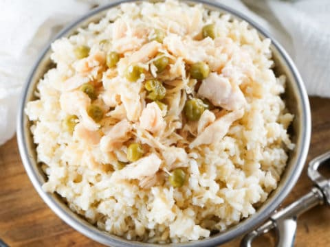 brown rice dog food