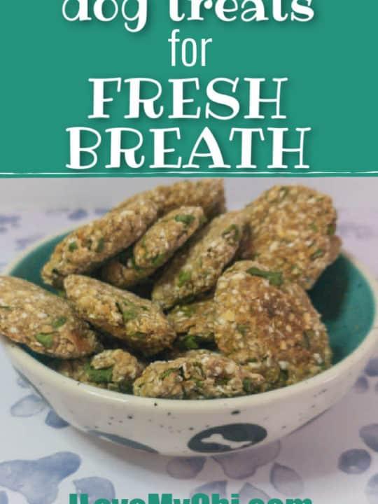 fresh breath treats in bowl