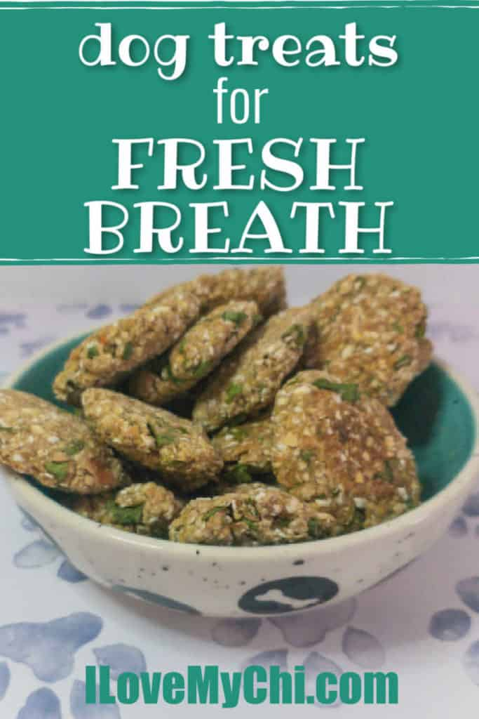 fresh breath treats in bowl