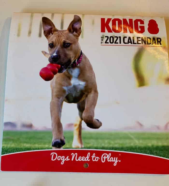 Kong Calendar