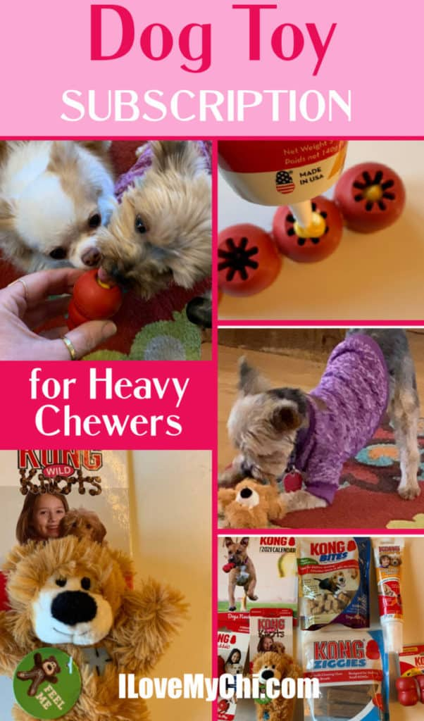 various photos of dog toys and dogs chewing them