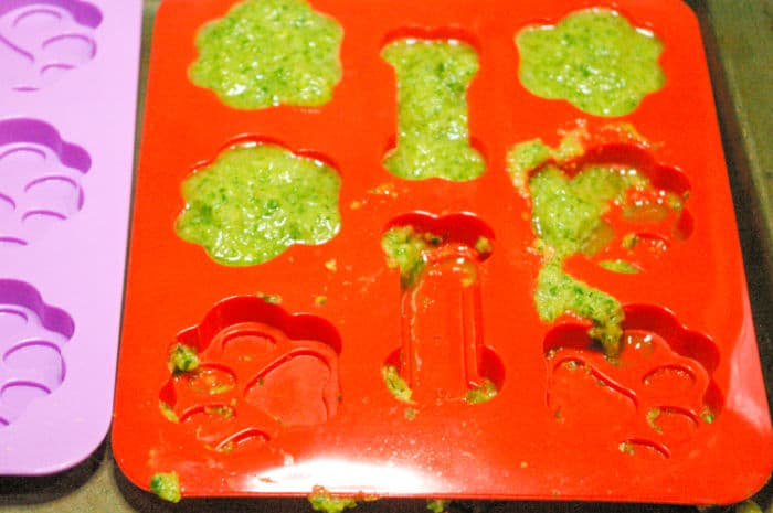 treats in mold