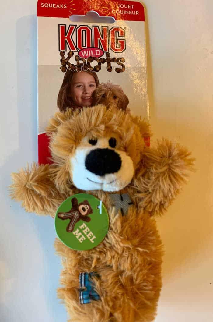 teddy bear dog toy