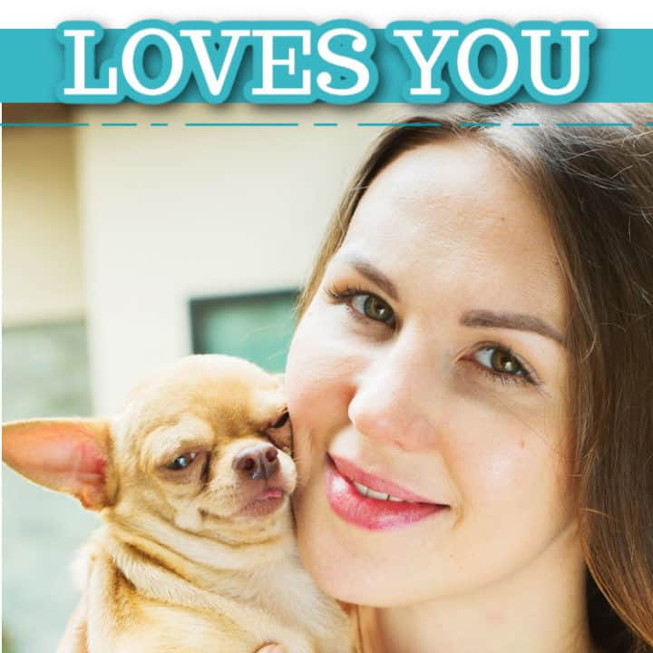 woman holding fawn chihuahua close to her face